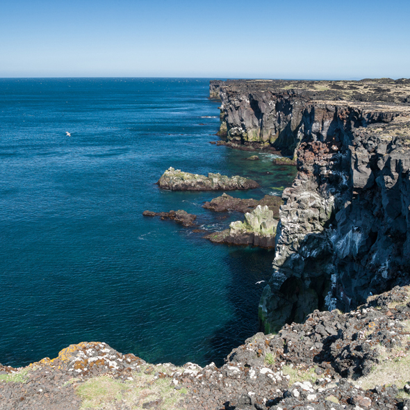 Hornbjarg Bird Cliffs